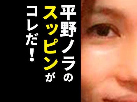 平野ノラがいかに美人か分かるスッピン画像!ツヤ肌&美髪で母親に似てる?
