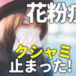 花粉症でマスクも効果ないならインナーマスク!自宅で簡単に作る方法