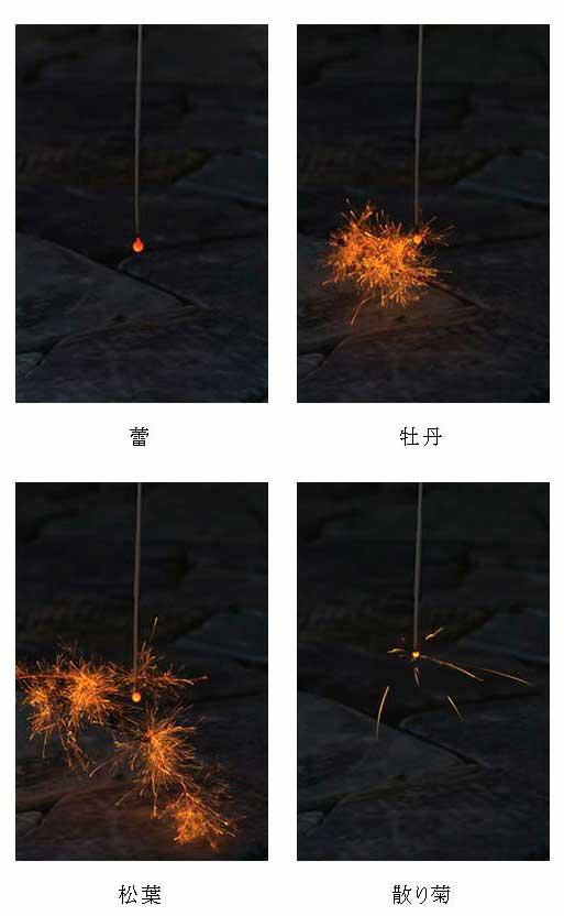 線香花火の移ろい(蕾、牡丹、松葉、散り菊)