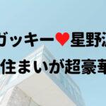 ガッキーと星野源の広尾マンション 内装の高級感!別棟でも会い放題!